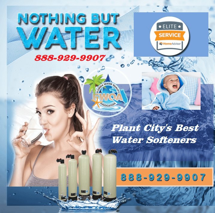 Tampa Bay water softeners