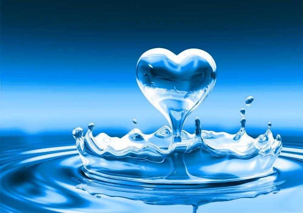 sarasota well water